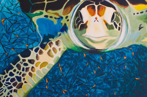 """Swimming with Sea Turtles"" by Susan Clifton"